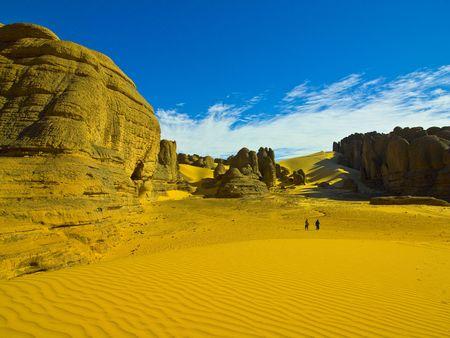 Algierski: algerian pustyni