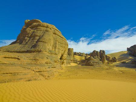shifting: algerian desert