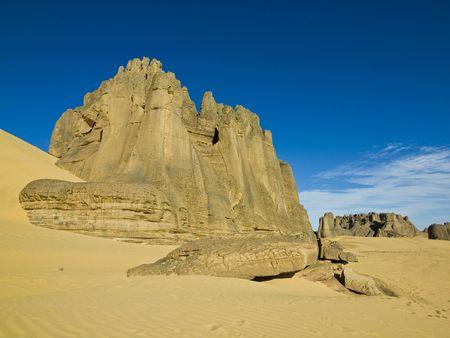 adaptations: algerian desert
