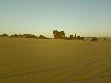 arabe: desierto argelino