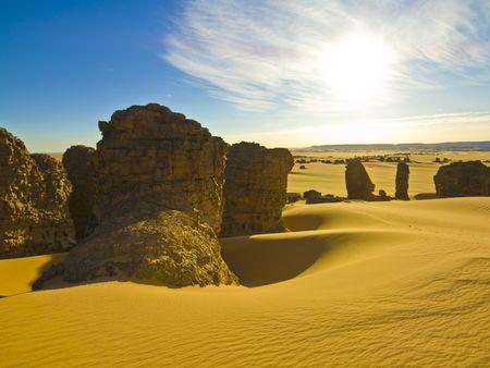 Algierski: algierski pustyni