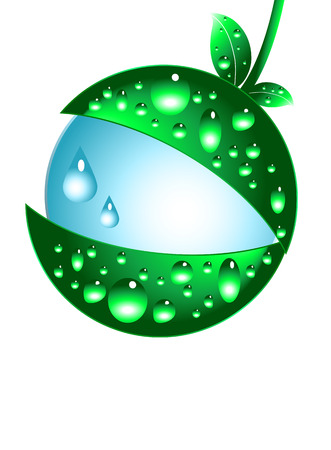 Water drops and green leaves vector illustration Stock Vector - 3748399