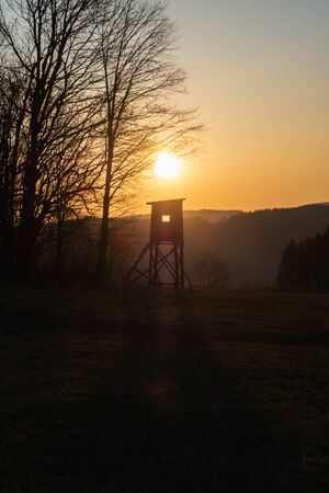 Hunting tower standing in a field with a lone oak and forest, sunset time.