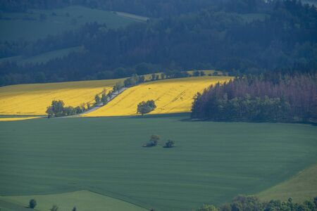 A beautiful Czech Republic agriculture landscape with light and yellow rape fields.