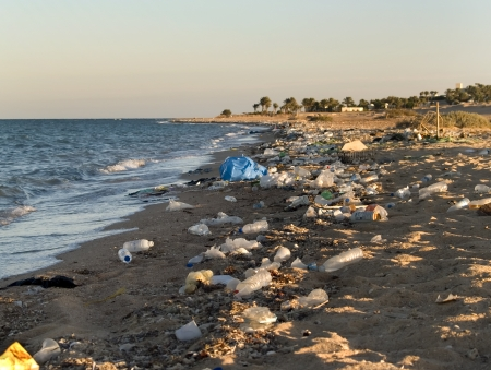 Ecological catastrophe on Red sea  Coral Beach  Hurgada  Egypt Stock Photo