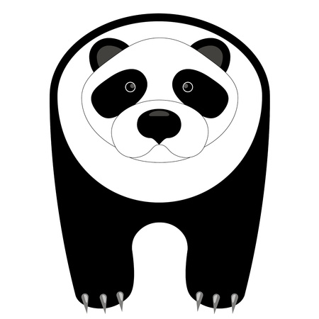 vector drawing of the panda on a white background