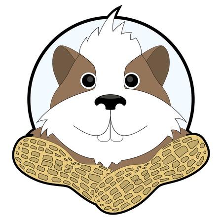 cartoon cheerful hamster ad for nuts