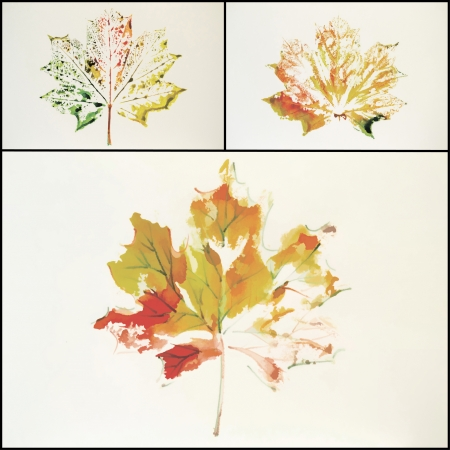 set of drawings maple leaf painted in watercolor Stock Photo - 22734667