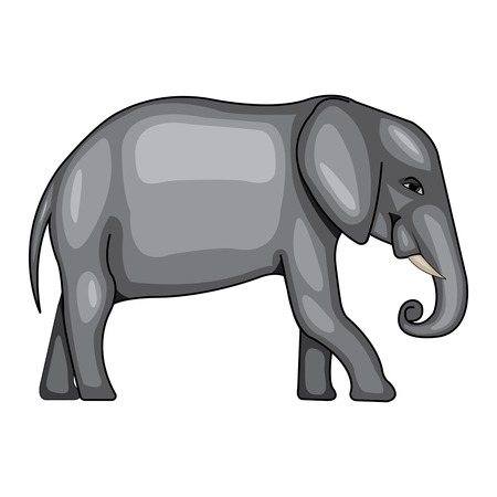 vector illustration of a large Indian elephant