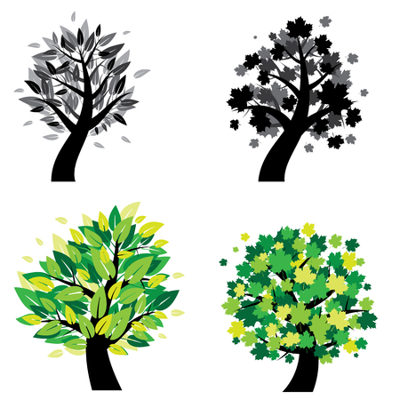 illustration of different trees. Trees with leaves