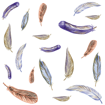 Beautiful watercolor background with feathers Stock Photo