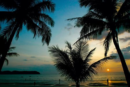 sunset in tropics Stock Photo - 2245074