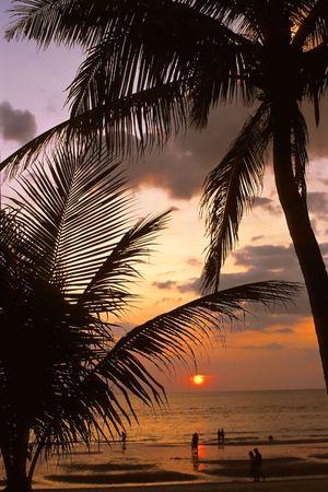 sand beach at sunset Stock Photo - 2544253