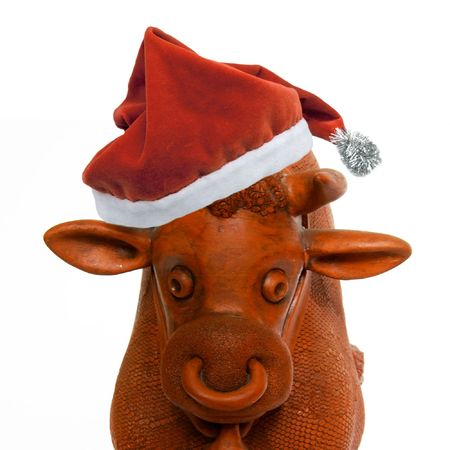 closeup cow face: red bull in santa hat over white Stock Photo