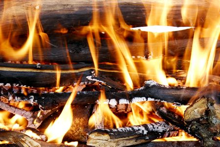 barbecues: burning woods in fireplace