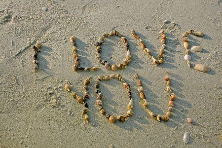 """""""Te quiero"""" a partir de conchas marinas en la playa de arena Foto de archivo - 4169840"""