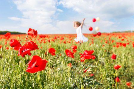 poppy field: gelukkige meisje met kleurrijke ballonnen met poppy veld
