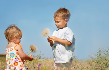 big brother: two kids playing with big dandelions Stock Photo