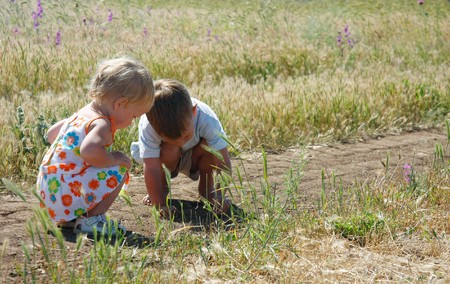 two kids playing in country side photo