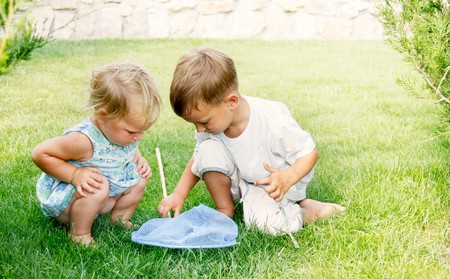 butterfly net: two kids playing with butterfly net