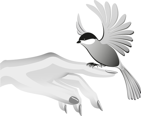 finder: Black and white drawing, bird sits on the finder.