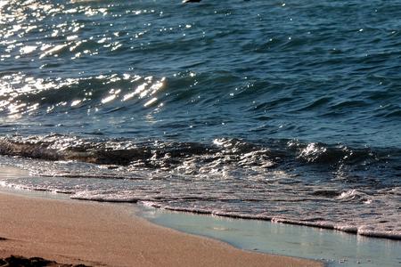 velvety: Sea shore at night, light waves and velvety sand.