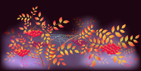 spider webs: Autumn Landscape with spider webs and dew drops. EPS10 vector illustration. Illustration