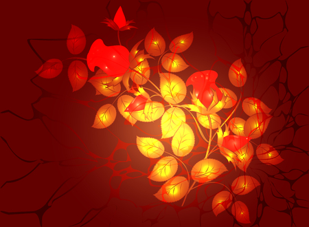 floral arrangement: Monochromatic floral arrangement in a Golden and fiery colors, vignette on dark red background.