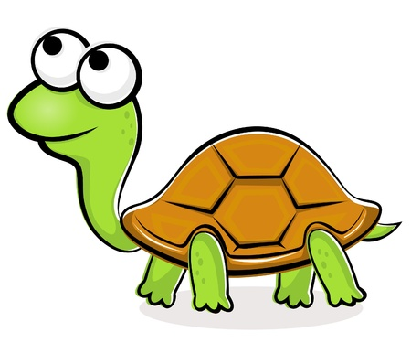 tortoise: Illustration of funny vector turtle