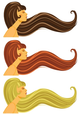 Vector illustration of long brown, blond and red  hair