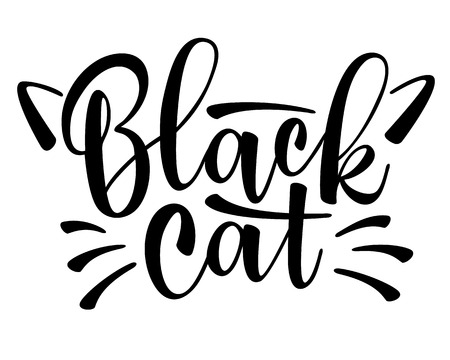 Vector black lettering Black cat with cute cat whiskers. Sketch drawing kitten slogan poster