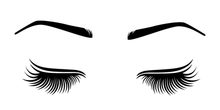 Vector illustration of lashes and brow.