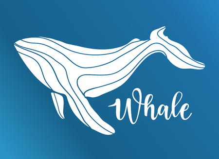 Vector illustration of an abstract whale logo deign