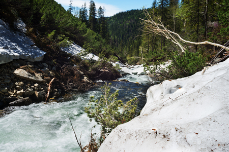 mountain stream: Mountain stream.