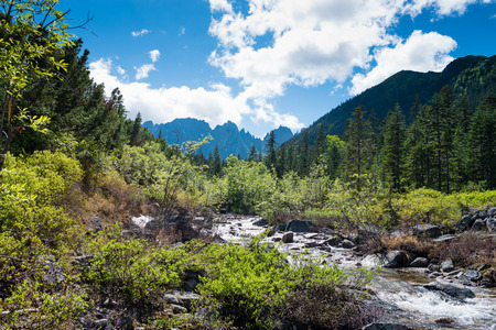 Travel the mountains Dusse Alin Russia far East Khabarovsk Krai. Rapid Creek a Creek in the mountains of Dusse Alin. 版權商用圖片
