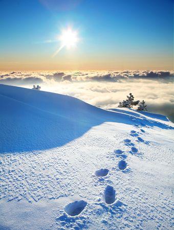 footprints on a snow Stock Photo - 5309134