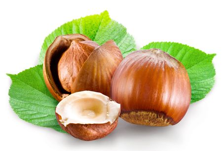 hazelnuts: filbert Stock Photo