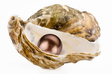oyster shell: Black pearl is in a shell.