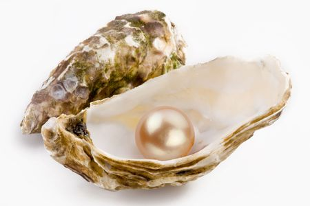 oyster shell: Yellow pearl is in a shell.