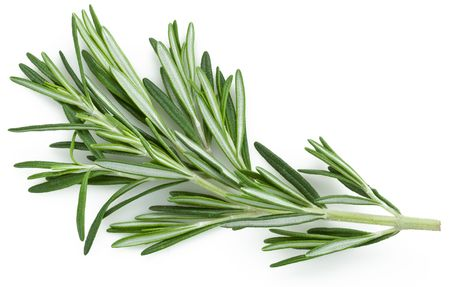 lavage: rosemary