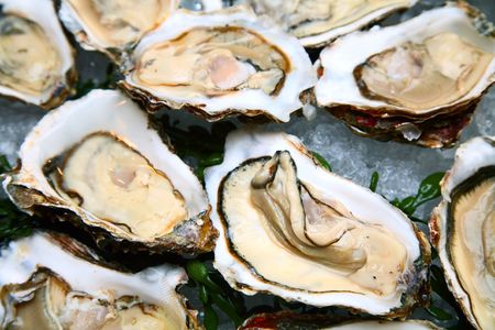 oyster Stock Photo - 5329072