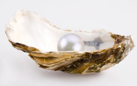 ostra: Perla es en un shell.