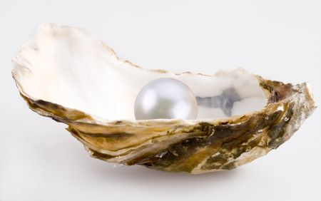 oyster: White pearl is in a shell.