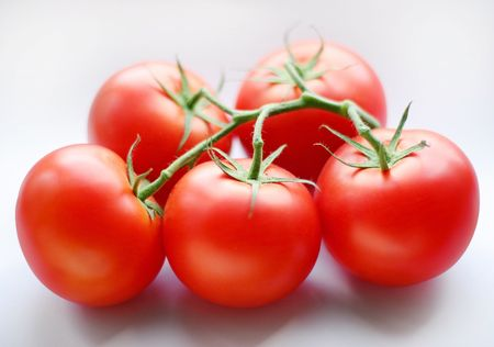 heartiness: Tomatoes; objects on white background Stock Photo
