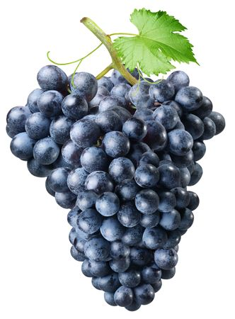 Cluster of grapes on a white background photo