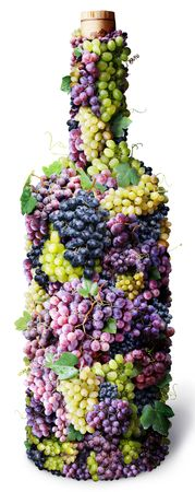 twined: Vine bottle twined round with clusters of grape on a white background