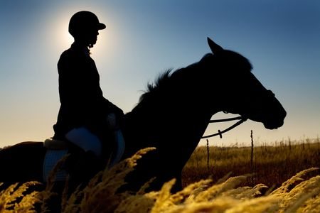 Jockey  and horse silhouettes in the field in summertime photo