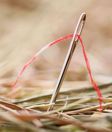Needle with a red thread in a haystack photo