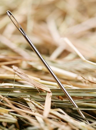 Needle is in a haystack photo