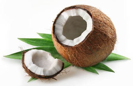 coconut on a white background photo